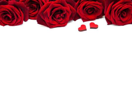 Rosas rojas frescas en un fondo blanco Foto de archivo - 51434822