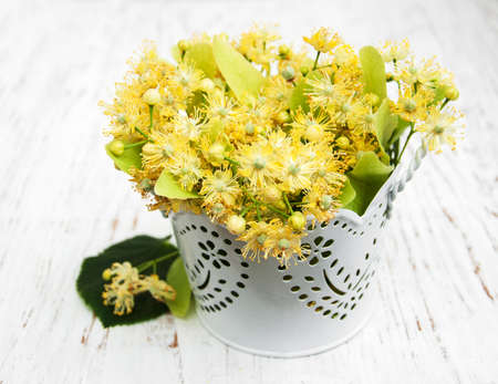 tilo: Flores de tilo en un fondo de madera vieja