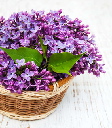 lilac: Lilac flowers on a old wooden background