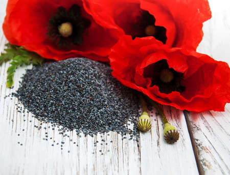 poppy seeds: Poppy seeds and flowers