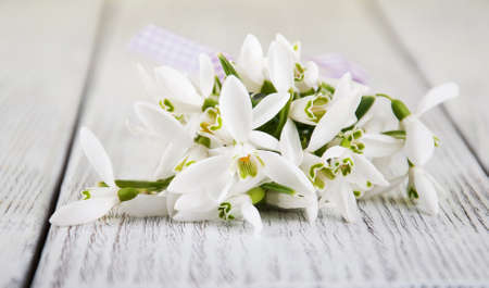bouquet of snowdrops on a old wooden table