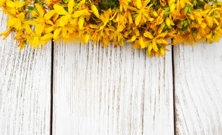 Saint-Johns-wort flowers  on a old wooden background