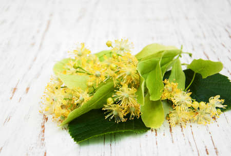 Linden flowers on a old white table