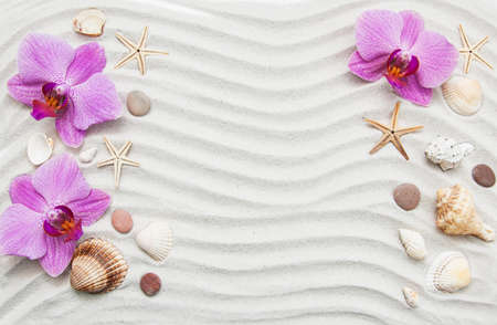 Summer background seashells and starfish border on sand Stock Photo