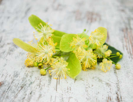 Linden flowers on the old wooden background