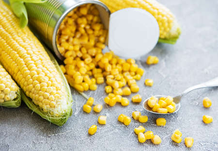 preserved sweetcorn and fresh raw corn on a concrete background
