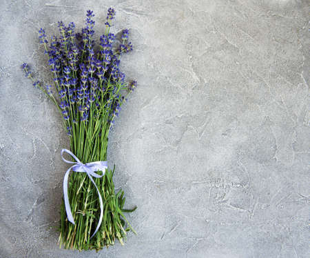 fresh lavender flowers on a concrete background