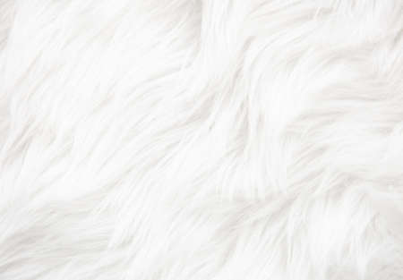 White fur texture close up, useful as background Stockfoto