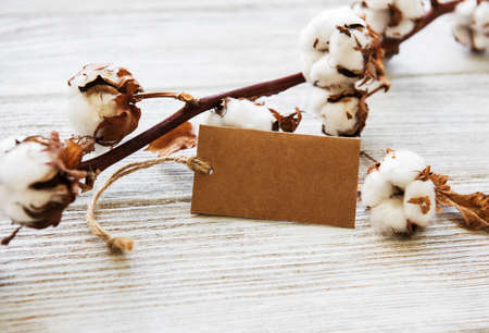 cotton flower with tag on a old wooden table Standard-Bild - 121683761