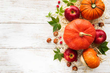 Colorful autumn pumpkins on an old wooden table