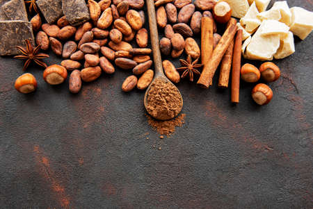 Natural  cocoa powder and cocoa beans  on a black  background Banco de Imagens