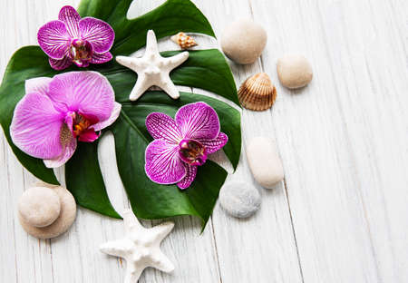 Natural spa ingredients with orchid flowers on a white wooden background
