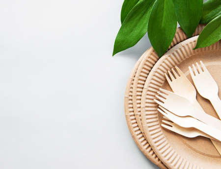 Zero waste, environmentally friendly,  disposable,  cardboard, paper tableware.