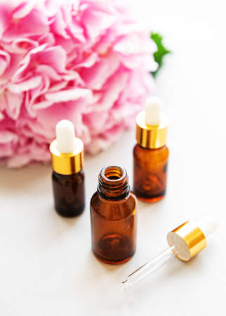 Spa composition with pink hydrangea flowers and massage oil in bottles on white background