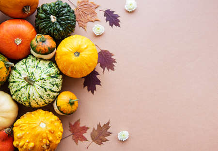 Pumpkins  and fall leaves on a light brown background. Pumpkin harvest. Seasonal vegetables. Flat lay.