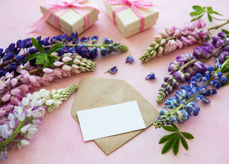 Mockup white greeting card and envelope with lupine flower on a pink concrete background