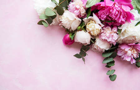 Background with pink peonies on a pink concrete background Banque d'images