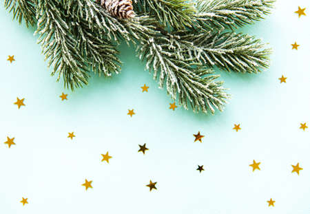 Christmas tree branch with snow and pine cones on light blue background with copy space Imagens