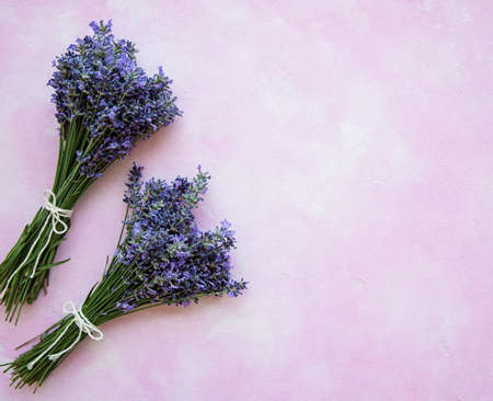 Fresh flowers of lavender bouquet on a pink concrete background
