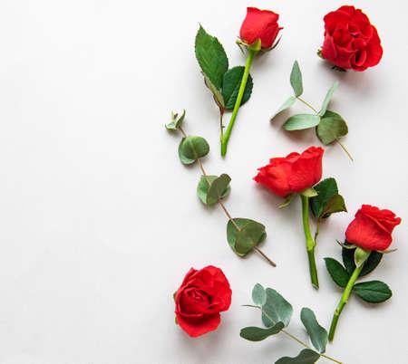 Rote Rosen und Eukalyptus auf weißem Hintergrund. Valentinsgruß-Konzept. Flach liegen.