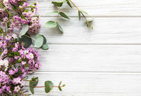 Pink flowers and eucalyptus on a white wooden background, flat lay, copy space
