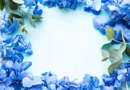 Blue hydrangea flowers and eucalyptus on blue pastel background. Floral border. Flat lay. Banco de Imagens