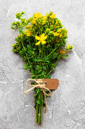 Bunch of St. John's wort with a tag on a gray concrete background