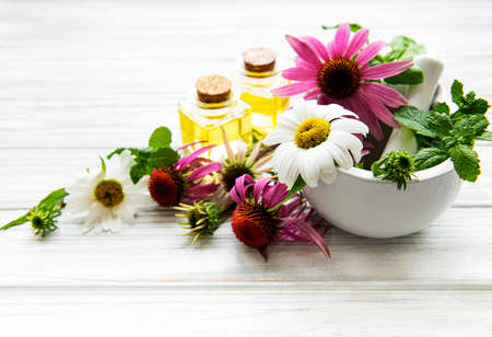 Medical flowers and plant in mortar and essential oils on a white wooden table