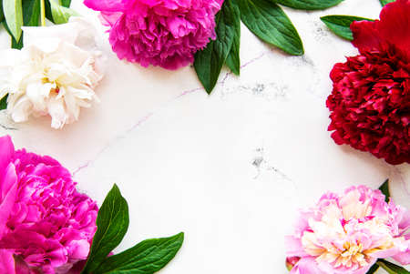 Fresh pink peony flowers border with copy space on white marble background, flat lay.