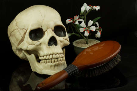 eye socket: Skull with hairbrush and zen jade flower arrangement Stock Photo