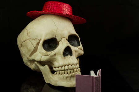 skullcap: Skull wearing a red straw hat and reading a book Stock Photo
