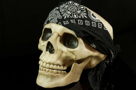 Pirate skull with bandana Stok Fotoğraf