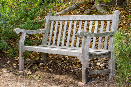 sitting on the ground: Romantic park bench in a rustic setting at a local park