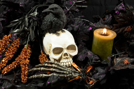 Scary and creepy Halloween decorations of  skulls, ravens and magic potions Stock Photo