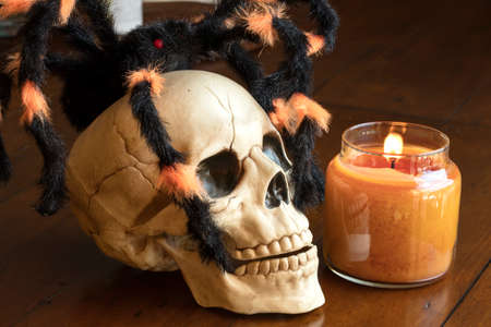 Skull and spider next to a lit candle as a Halloween decoration