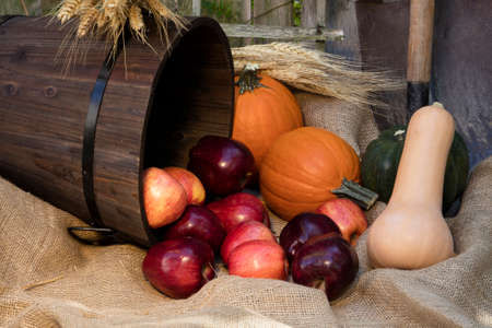 decor: Lovely red apples, orange pumpkins, and a variety of squash gourds layed out as an autumn garden decor Stock Photo