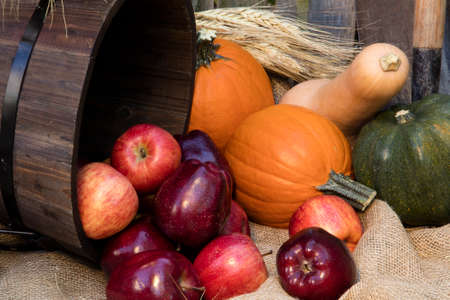gourds: Lovely red apples, orange pumpkins, and a variety of squash gourds layed out as an autumn garden decor Stock Photo