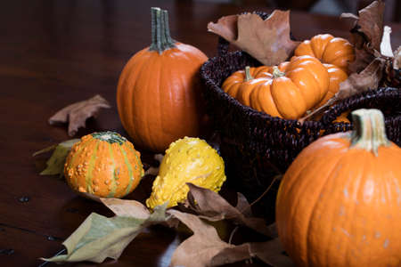 happy thanksgiving: Orange Pumpkins, small gourds and Indian corn set on a table as a Thanksgiving decoration