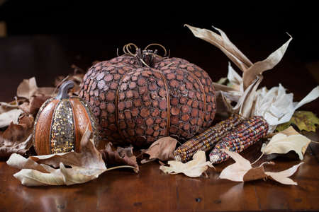 Orange Pumpkins, small gourds and Indian corn set on a table as a Thanksgiving decoration