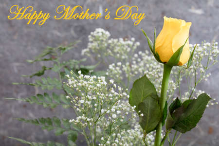 babys: Yellow Rose and Babys breath for a Mothers Day celebration
