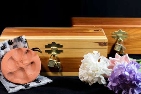 urn: Urn of ashes of a beloved pet who passed away Stock Photo