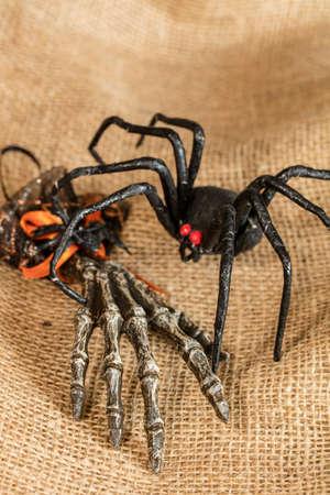 Black widow spider and skeleton hand Halloween decor