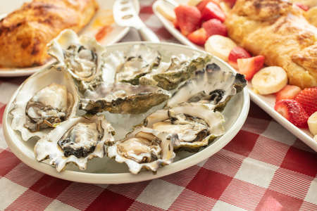 Plate of raw oysters in their shells laid out in a circle