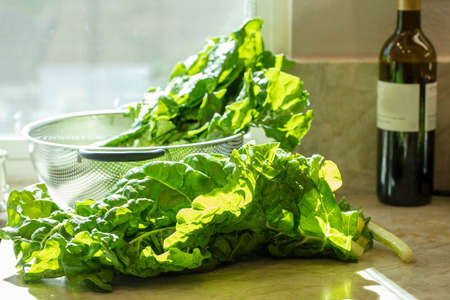 Bunch of large leaf Swiss Chard being prepared on a kitchen counter  for a meal