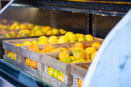 Crates full of oranges and lemons in a refrigerated display all in a row Stok Fotoğraf