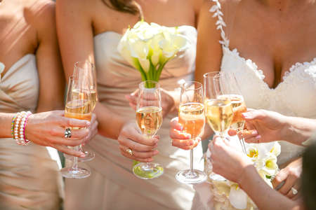 Champaign glasses and a toast by the bride and bridesmaid at a wedding reception.