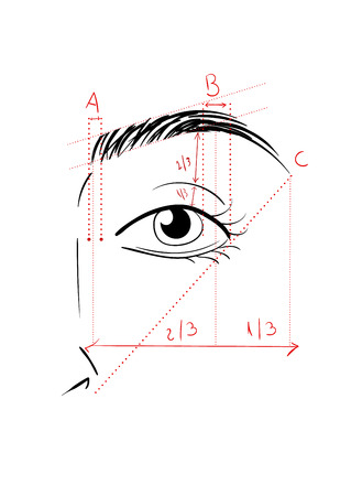 Vector illustration of woman face and eyebrow mapping. How to shape it at home. Makeup tips. Perfect browbar 版權商用圖片 - 60254972