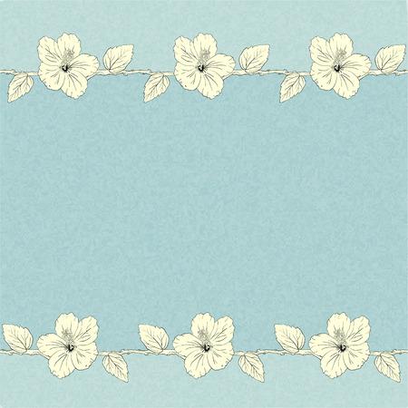 sorrel: illustration with hibiscus flowers. Vector floral background. Illustration