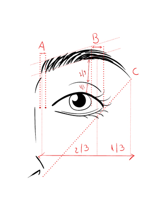 Shaping The Eyebrows Stock Photo