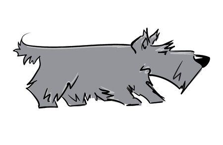 scottish terrier: scottish terrier
